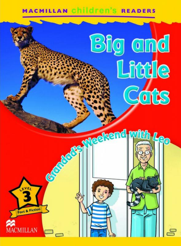 Big and little cats-800x1000.jpg